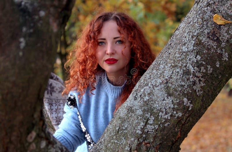 有红色头发的一年轻女人殷勤地调查照相机并且紧贴对一棵树在公园 在背景您能看到 库存照片
