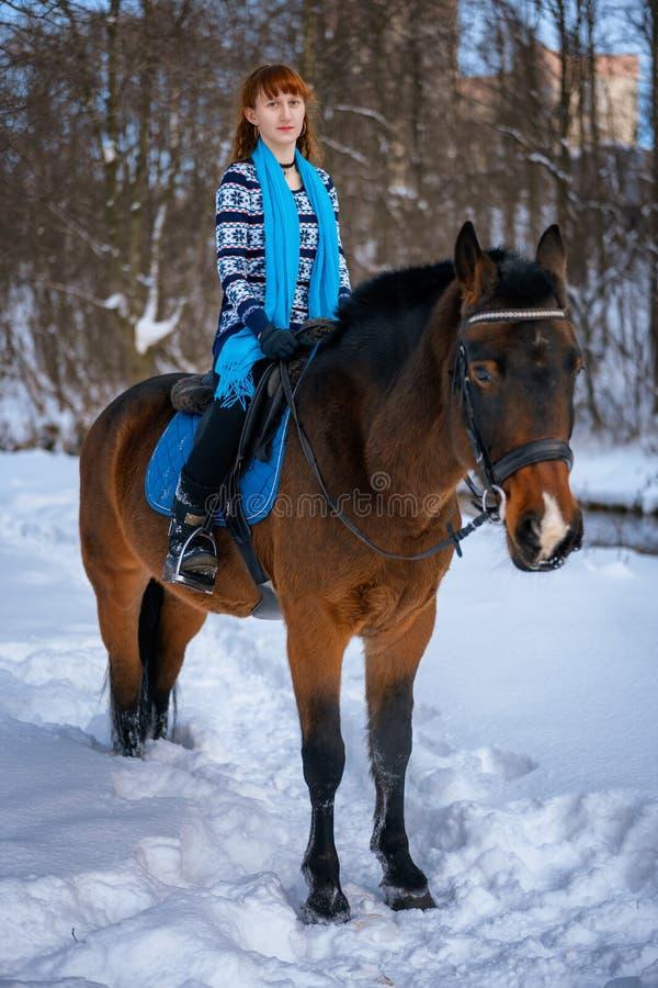 有红色头发的年轻女人在一匹马在冬天 免版税库存照片