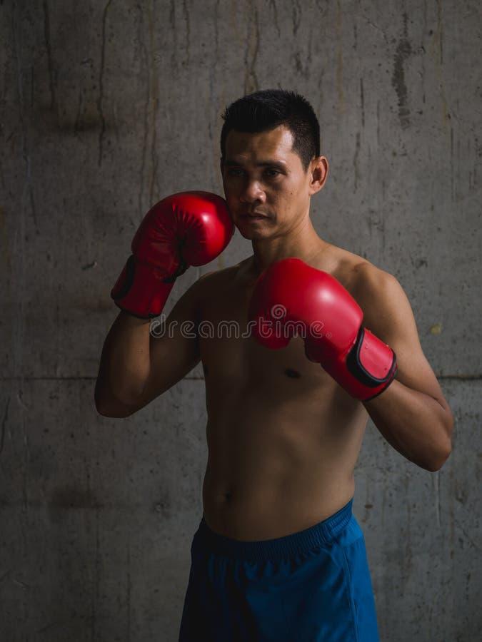 有红色手套身分的亚裔拳击手 免版税库存照片