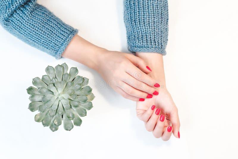 有红色指甲的完善的修饰的妇女的手 图库摄影
