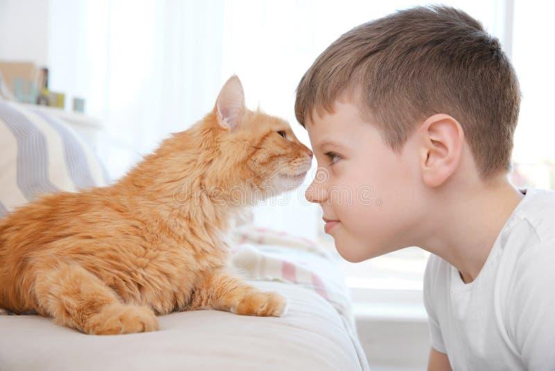 有红色猫的逗人喜爱的小男孩在家 免版税库存照片