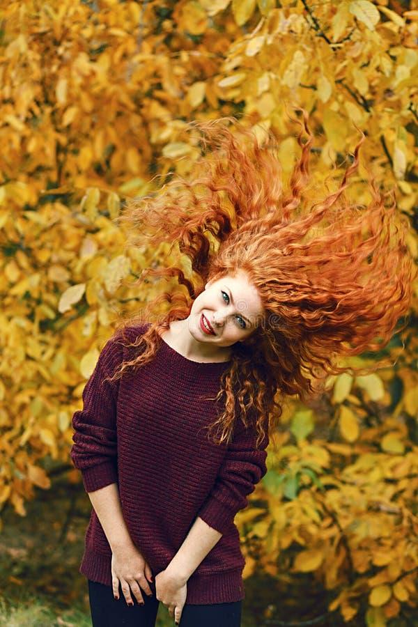 有红色长发的正面美丽的年轻女人在秋天森林背景,头发用不同的方向 免版税库存照片