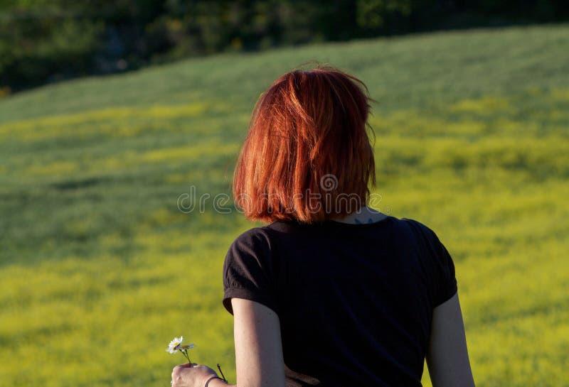 有红色头发后面的妇女在黄色花的领域 免版税图库摄影