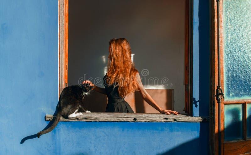 有红色头发和猫的美丽的女孩在窗口 库存图片