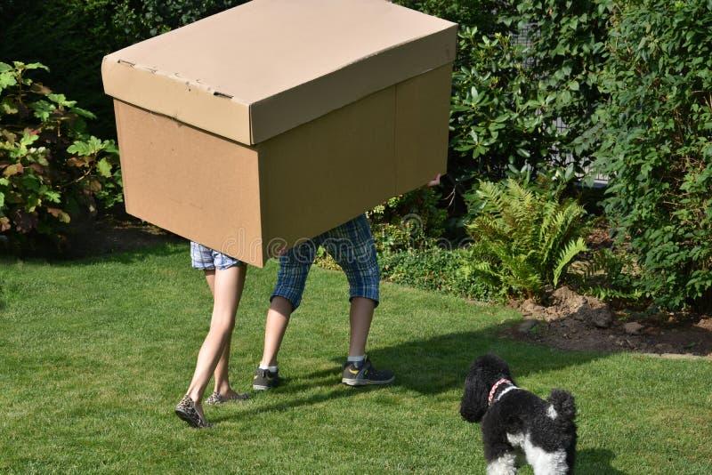 有纸板箱的兄弟姐妹 图库摄影
