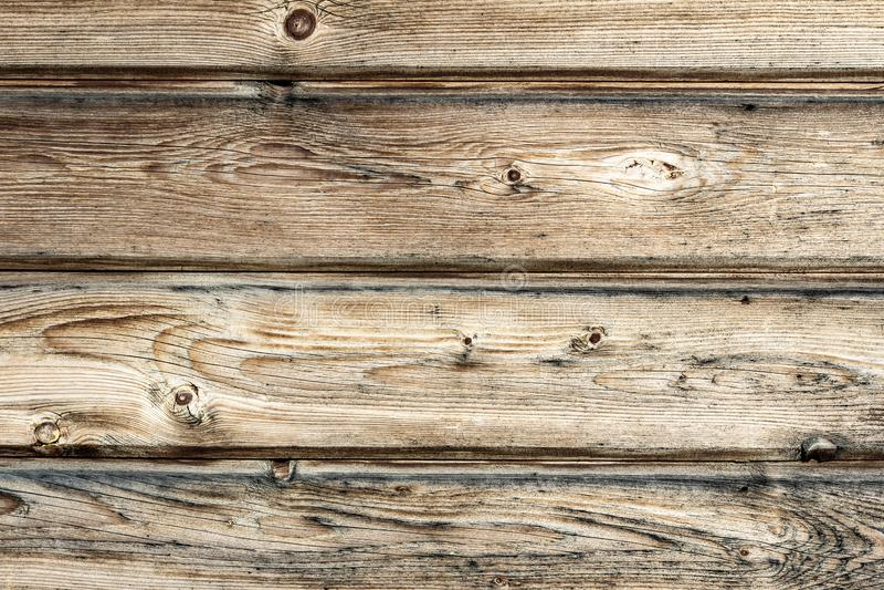 有结的老木委员会构造背景 向量例证