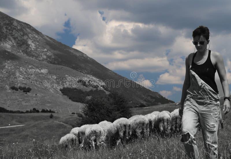 有绵羊的妇女在背景中 图库摄影