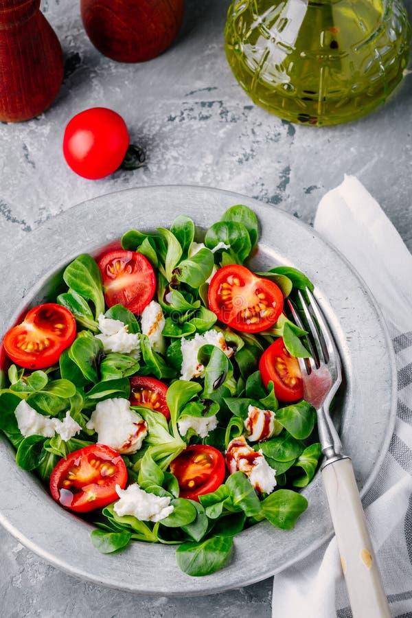 有绿色叶子、无盐干酪、蕃茄和芳香抚人的调味汁的新鲜的色拉盘 库存图片