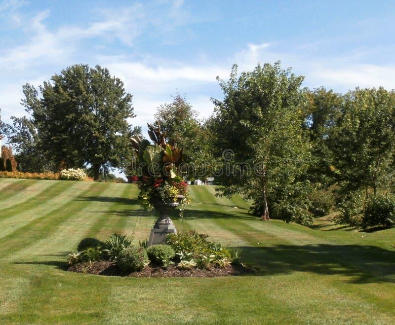 有绿色叶子和树的草坪庭院 免版税库存照片