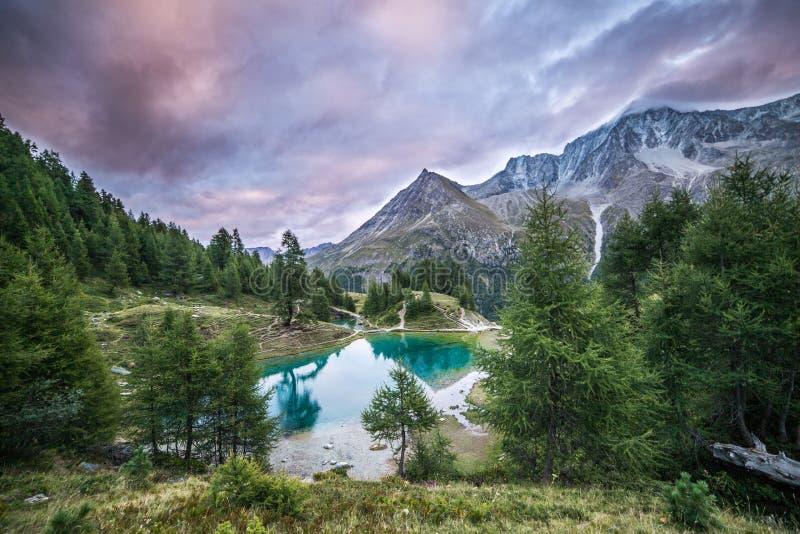 有绿色杉木森林的蓝色Mountain湖在一多云天 免版税库存图片