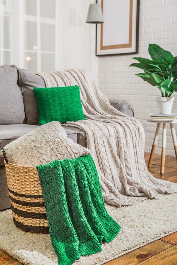 有绿色格子花呢披肩的沙发在内部 免版税库存照片