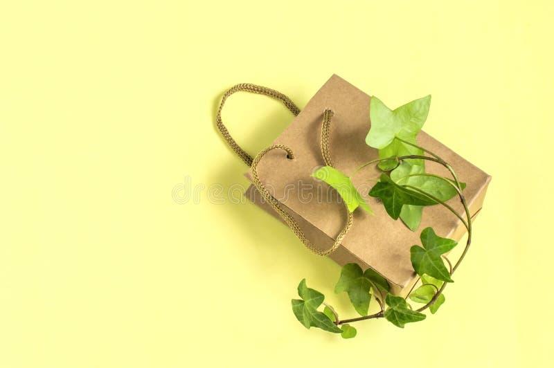 有绿色植物分支的环境友好的购物带来  库存图片