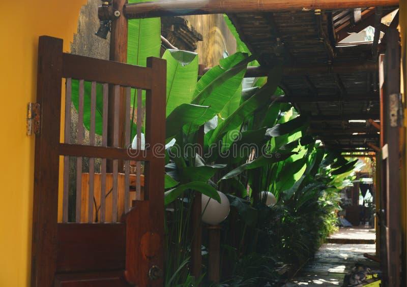 有绿色植物装饰的葡萄酒房子 免版税库存图片
