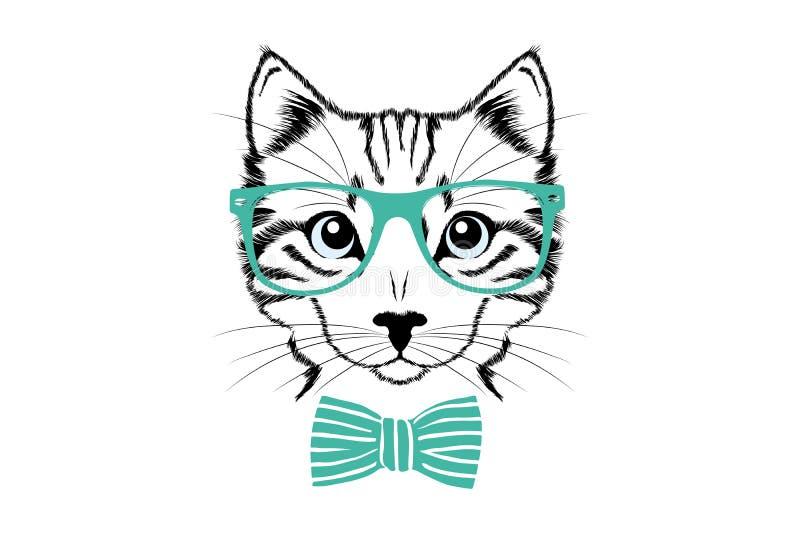 有绿色玻璃和逗人喜爱的领带的猫的头 免版税图库摄影