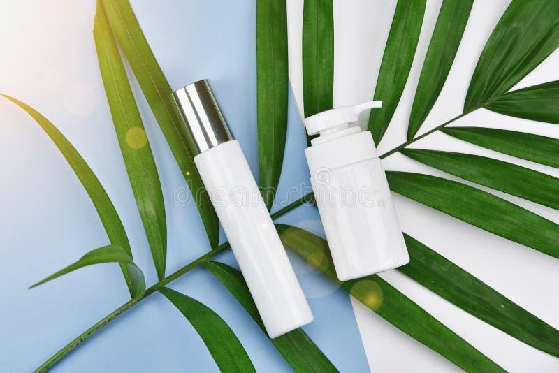 有绿色草本叶子的,烙记的大模型的空白的标签,自然美容品概念化妆瓶容器 免版税库存照片
