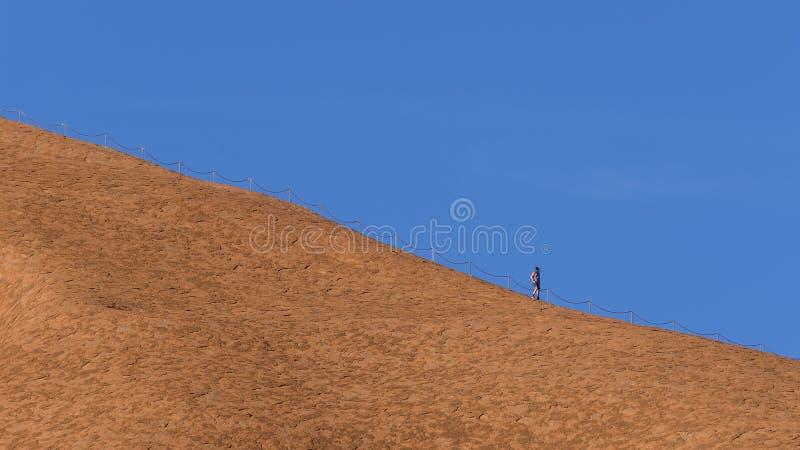 有网包括的他的面孔的运动人保护自己免受昆虫在Uluru巨型独石,艾瑞斯岩石,澳大利亚顶部 库存图片