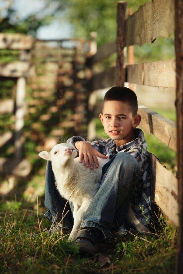有羊羔的小男孩 库存照片