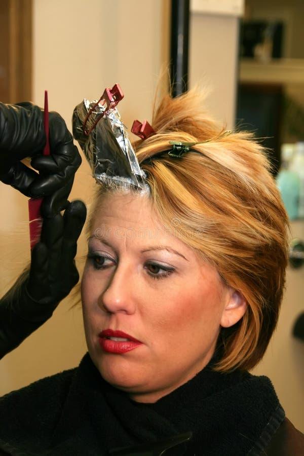 有美丽的有叶形装饰的头发妇女 图库摄影