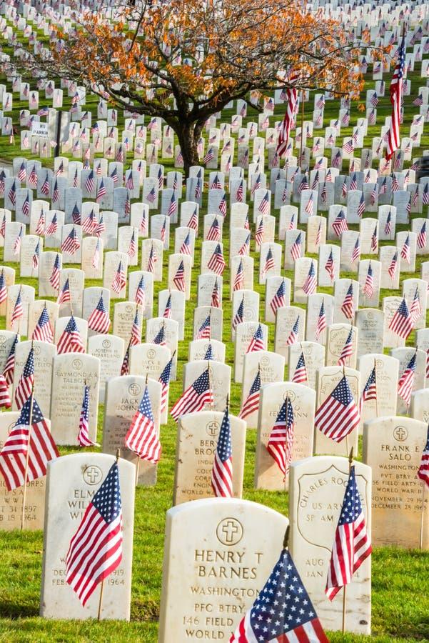 有美国国旗的墓石在退役军人公墓 图库摄影