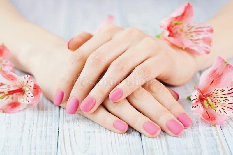 有美好的桃红色有席子的修指甲的妇女手 图库摄影