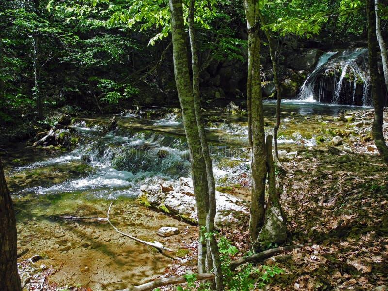 有美好的河门限的落下的河在春天的绿色春天森林克里米亚半岛山 免版税图库摄影