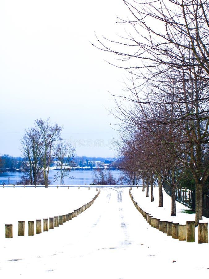 有美好的沿途有树的风景的积雪的城市道路在湖 库存照片