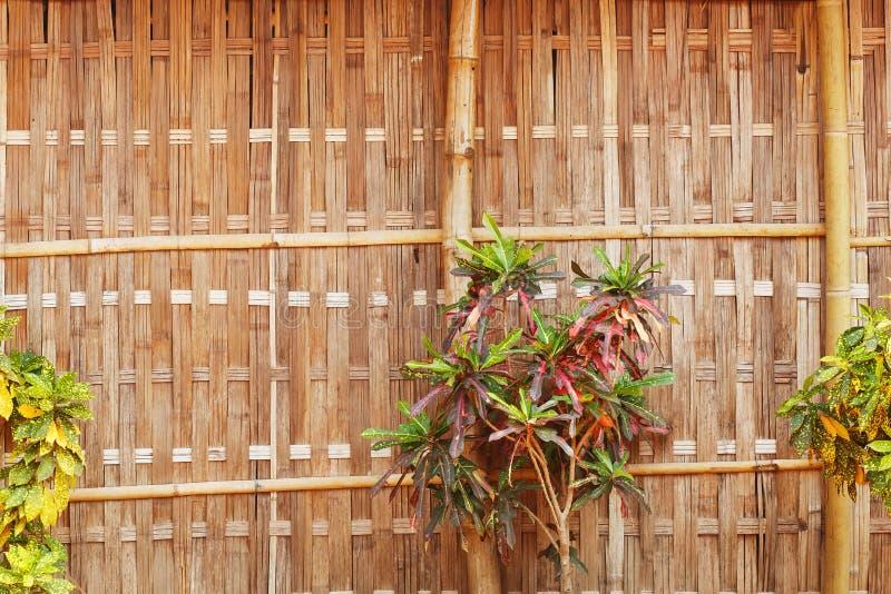 有美好的花和植被的竹墙壁 图库摄影