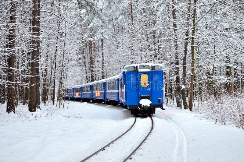 有美好的蓝色客车乘驾的一列老葡萄酒火车由铁路通过冬天多雪的森林 库存图片