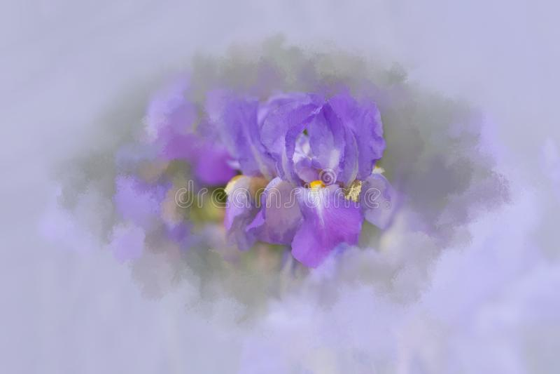 有美术的作用的抽象虹膜 免版税图库摄影