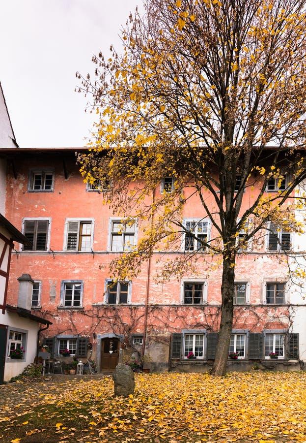 有老土气房子前面的在前景的庭院在典型的东北瑞士建筑学和秋天颜色树和叶子 库存图片