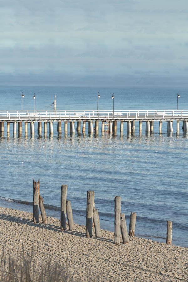有老基础堆的木走的海格丁尼亚Orlowo码头在海岸在波兰 免版税图库摄影