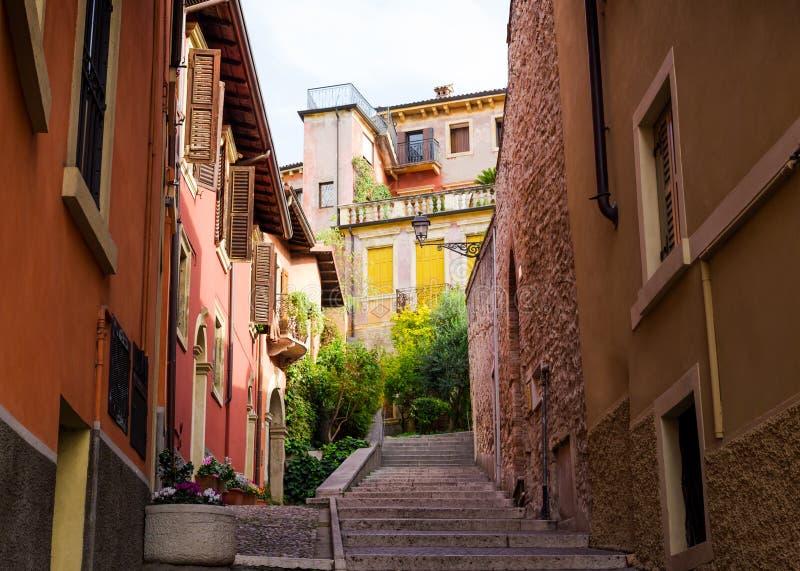 有老建筑学和绿色的城市街道开花维罗纳, Ital 库存图片