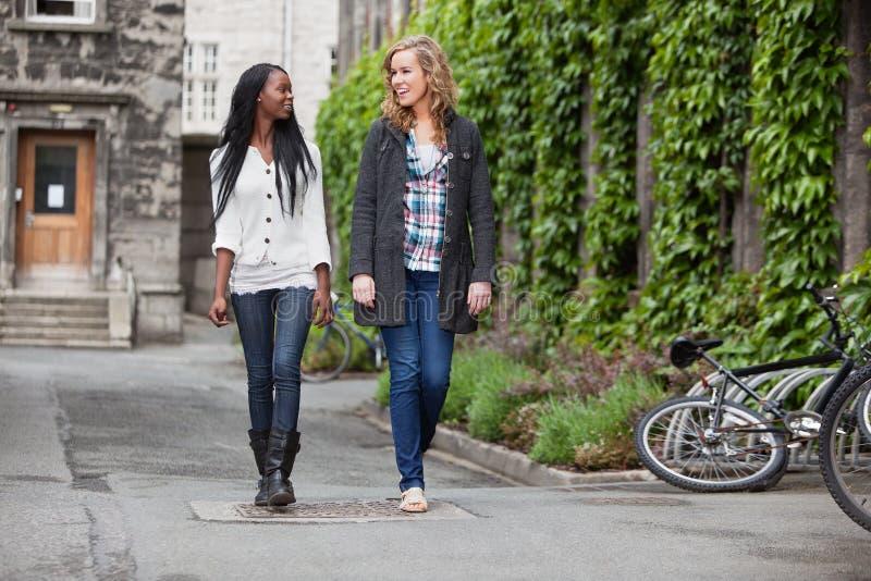有聊天女性的朋友走的年轻人 库存图片