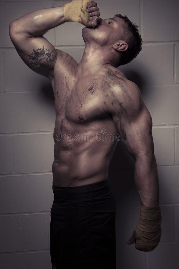 有肌肉体质的性感的爱好健美者 免版税库存照片