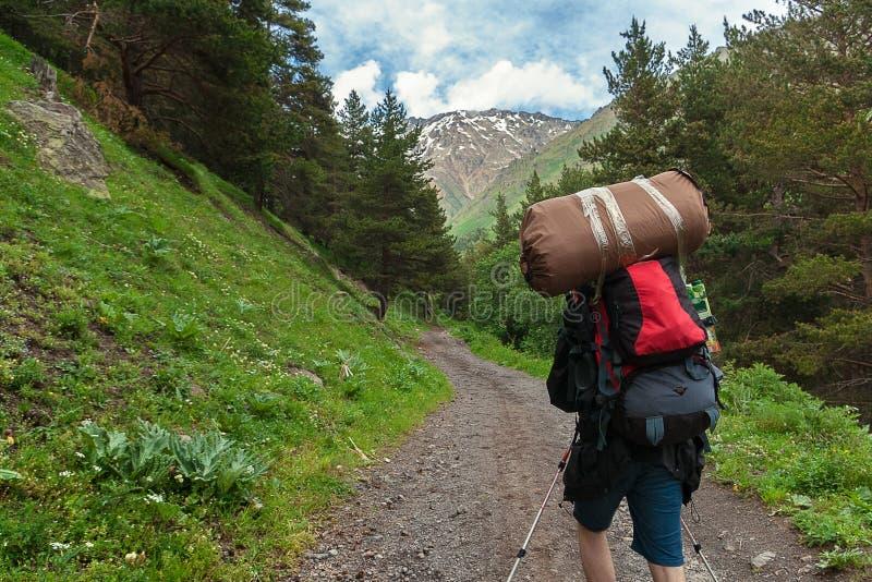 有背包和帐篷的旅客攀登山路通过森林高加索山脉,峡谷Terskol 库存图片