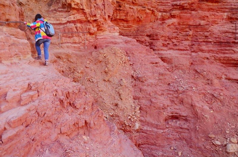 有背包攀登的女孩登山人落后到岩石墙壁 在路线的登山在伟大的红色峡谷 埃拉特, Isreal 库存图片