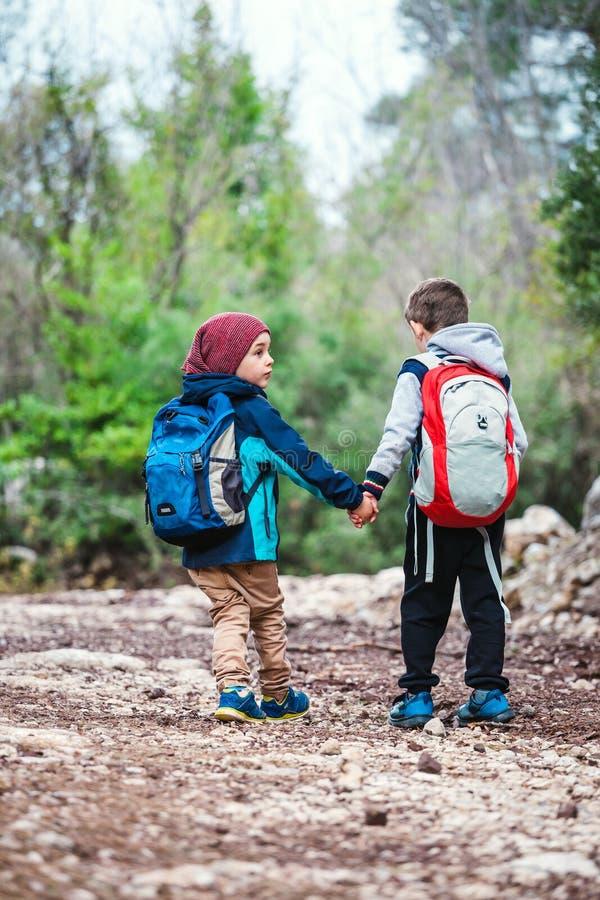 有背包的两个男孩沿森林道路走 库存图片