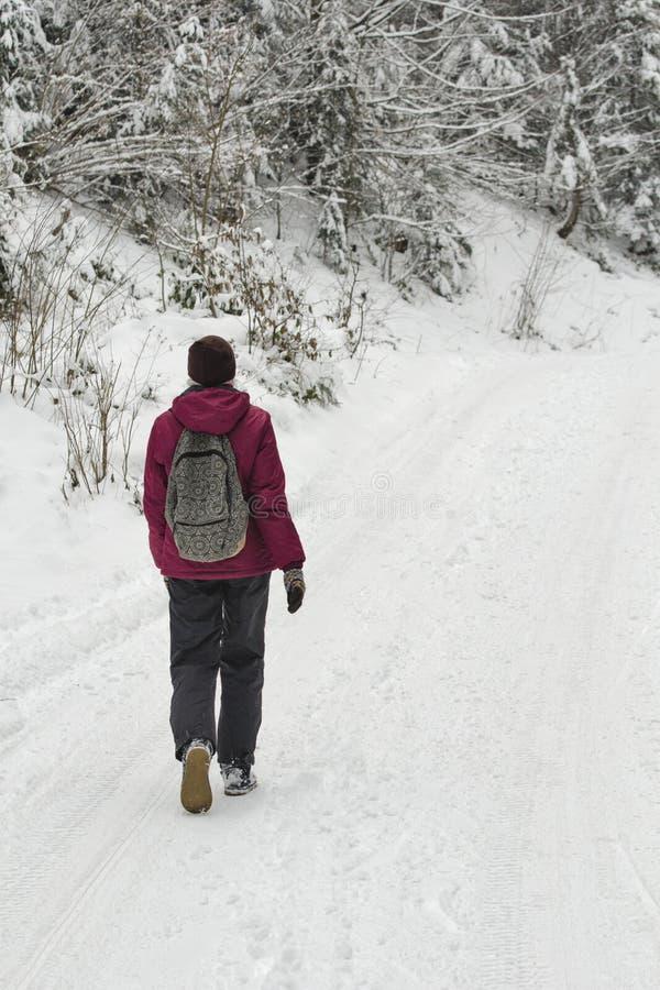 有背包的女孩走沿路的在一个多雪的森林冬日 库存图片