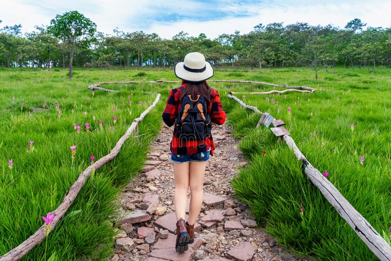 有背包的妇女旅客走在Krachiew花田,泰国的 r 免版税库存照片