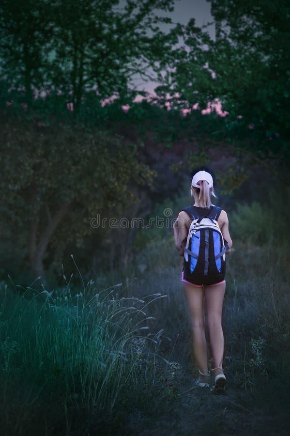 有背包的孤独的女孩远足者在前夕的森林里走 免版税图库摄影