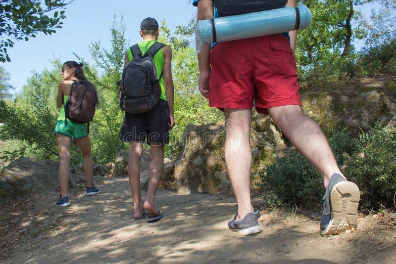 有背包的年轻远足者女孩末端男孩 一起迁徙 活跃远足者 免版税库存图片