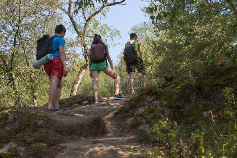 有背包的年轻远足者女孩末端男孩 一起迁徙 活跃远足者 图库摄影