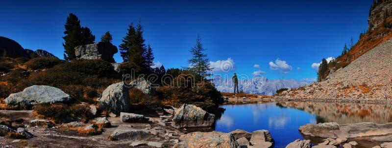 有背包的旅行家人享受在山的美好的天气 免版税库存照片