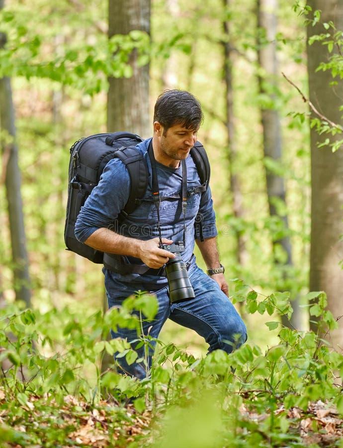 有背包的男性游人在森林里 免版税库存照片