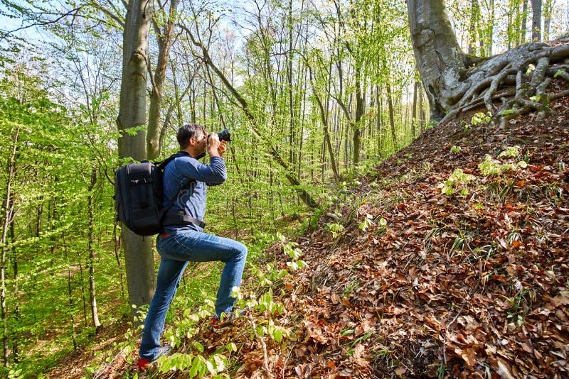 有背包的男性游人在森林里 库存照片