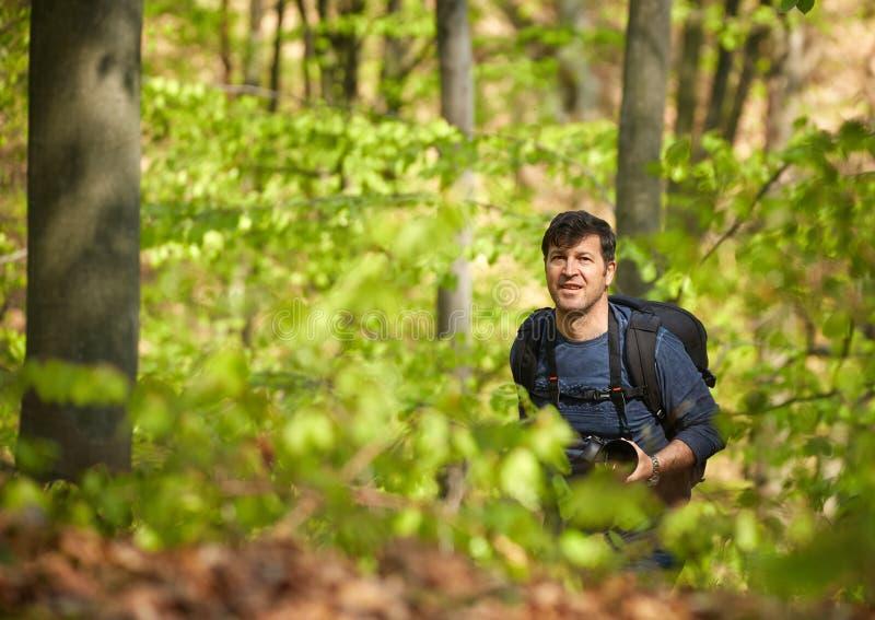 有背包的男性游人在森林里 图库摄影