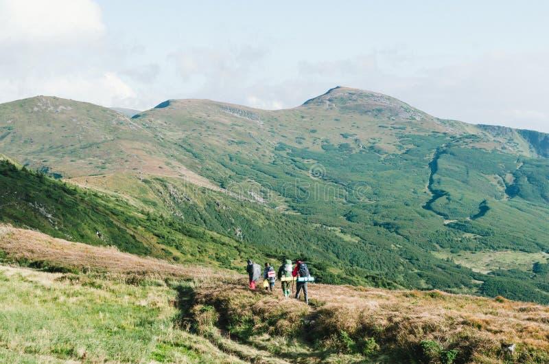 有背包的远足者在山和享受谷看法  免版税库存照片