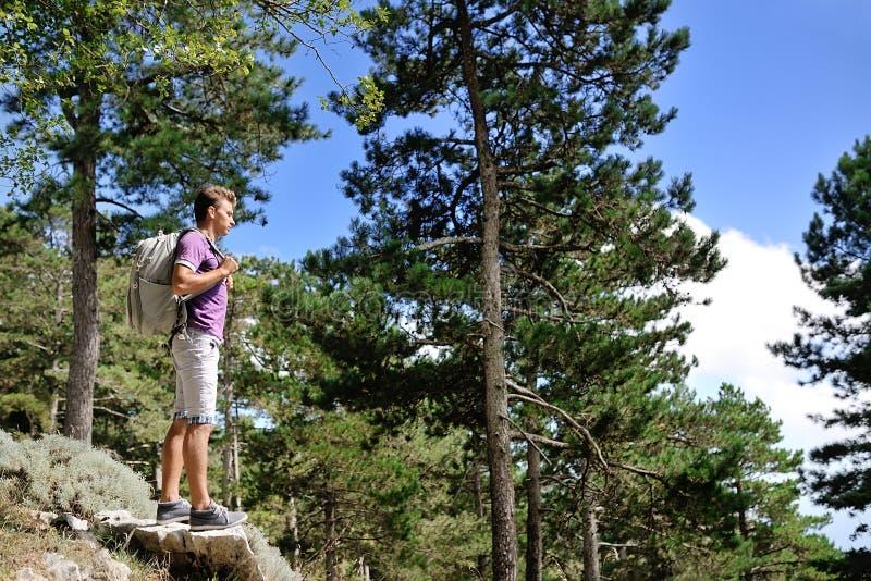 有背包的远足者在树之间的一座山 免版税库存图片