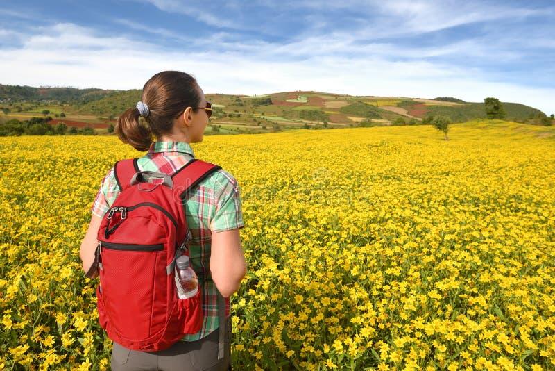 有背包的远足者走通过colo背景的草甸的  免版税库存图片