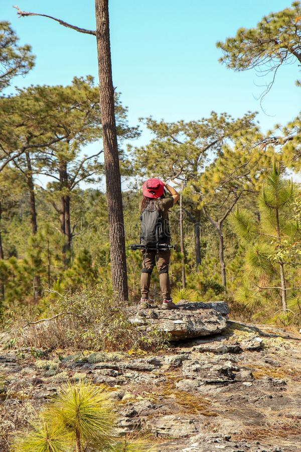 有背包藏品帽子的亚裔妇女旅客在山和热带森林,摄影师户外本质上,妇女采取 免版税库存照片
